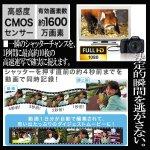 画像3: キヤノンPowerShot SX530 HS[豪華4点セット] (3)