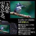 画像7: キヤノンPowerShot SX530 HS[豪華4点セット] (7)