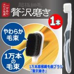 画像4: 1万本超極細毛歯ブラシ「贅沢磨き」(1本) (4)