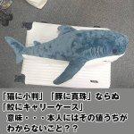 画像4: インスタ映えする超BIGなサメぬいぐるみ80cm (4)