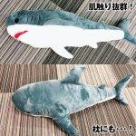 画像6: インスタ映えする超BIGなサメぬいぐるみ80cm (6)