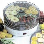 画像2: 果物・野菜乾燥機「からりんこ(R)」 (2)