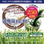 画像4: たっぷり乳酸菌EC-12!大麦若葉青汁5BOX(120包入り) (4)