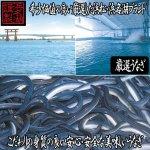 画像2: 浜松・浜名湖うな茶漬け2人前 (2)