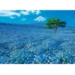 画像2: ジグソー日本の風景「ネモフィラの丘」フレームセット(600P) (2)