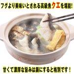 画像3: 国産本クエ鍋セット1kg (3)