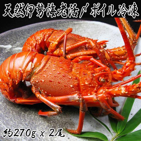 画像1: 天然伊勢海老活〆ボイル冷凍 (1)