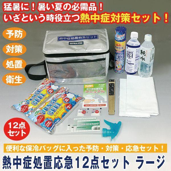 画像1: 熱中症処置応急12点セットラージ (1)