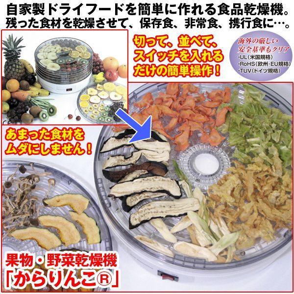 画像1: 果物・野菜乾燥機「からりんこ(R)」 (1)