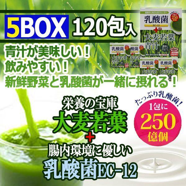 画像1: たっぷり乳酸菌EC-12!大麦若葉青汁5BOX(120包入り) (1)