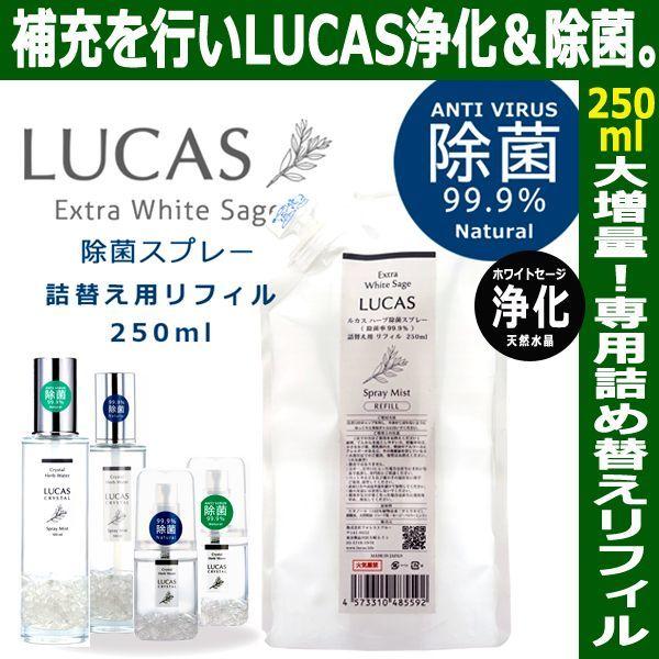 画像1: LUCASハーブ除菌スプレー専用詰め替えリフィル250ml (1)