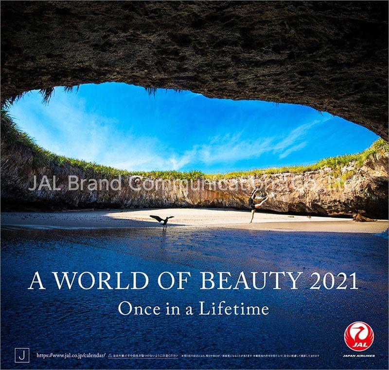 画像1: 2021年JAL「A WORLD OF BEAUTY」カレンダー (1)