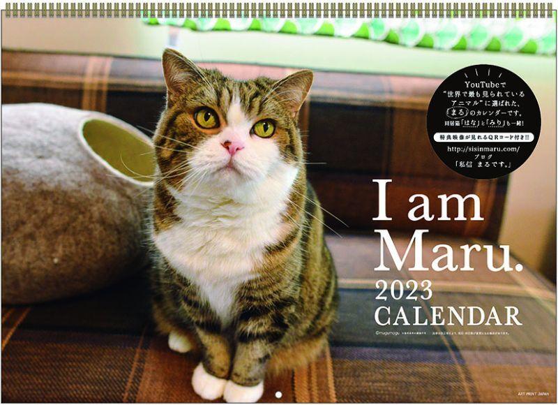画像1: 2020年人生はニャンとかなる!カレンダー (1)